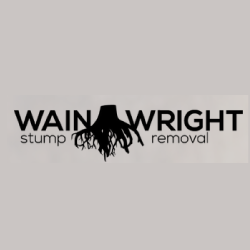 MCM2 | Digital Marketing Agency Cheshire | Wainwright Stump Removal logo