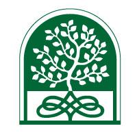 MCM2 | Digital Marketing Agency Cheshire | Tree logo